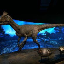 ロスアンゼルス自然史博物館