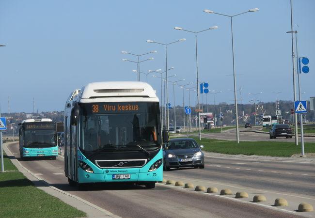 バス (タリン)