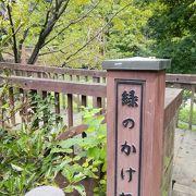 泉の森の中にある橋