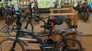 奥飛騨の大自然の中をひた走るスリル満点のレールマウンテンバイク