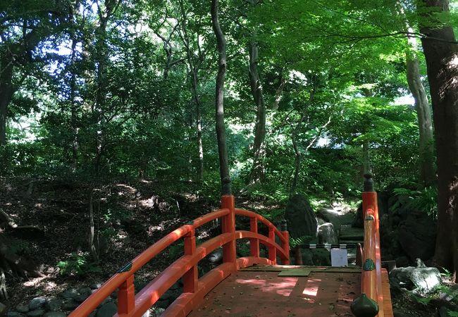小石川後楽園 通天橋