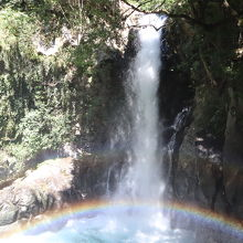 河津七滝の中で、一番ワイルドな景観