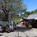 写真:出合茶屋
