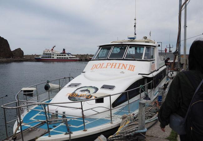 知床クルーザー観光船 ドルフィン