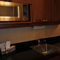 大きな冷蔵庫と食洗器もあります。