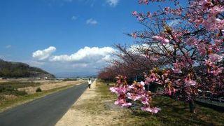 城山(静岡県伊豆の国市)