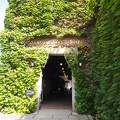 蔦の絡まるレンガ造りの建物は、明治時代の近代化産業遺産に指定される倉敷紡績の工場