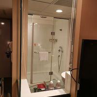 バスルームはガラスばり。バスタブなし。ブラインドを閉めて使用