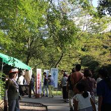 入場料が300円かかります。