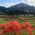 写真:寺坂棚田