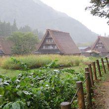 小雨に煙る五箇山菅沼集落