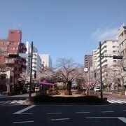 春日通りから小石川植物園方面へ下り坂なので、この方向で徒歩散策がおすすめです。