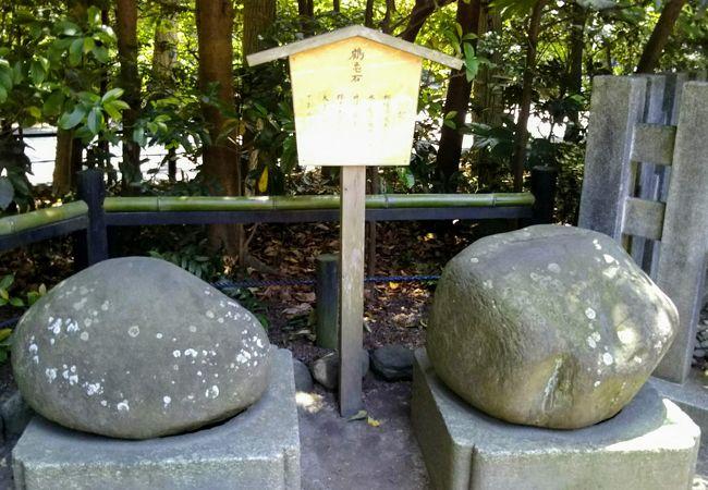 鶴岡八幡宮 鶴亀石