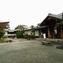 招福猫のお寺