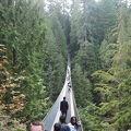 写真:キャピラノ吊り橋
