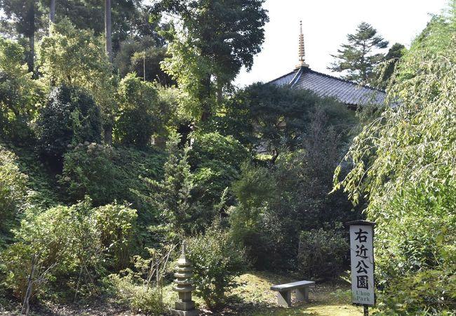 山の寺瞑想の道
