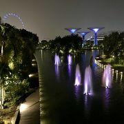 巨大植物園
