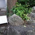 写真:日枝神社 さざれ石
