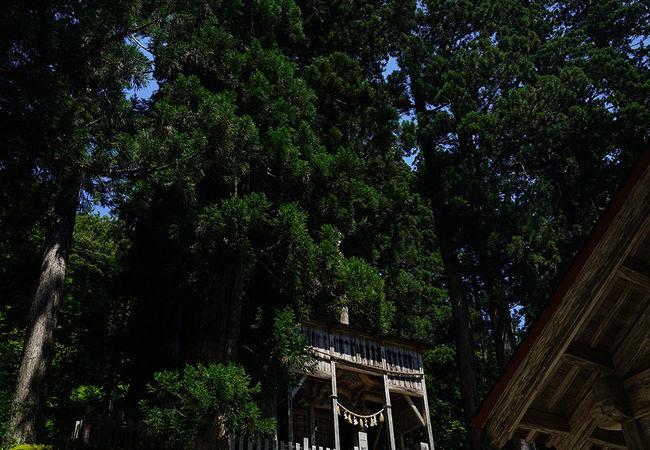 白山中居神社本殿