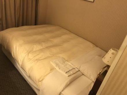 ホテルグランテラス富山(BBHホテルグループ) 写真