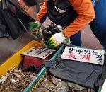 富平市場 (仁川)