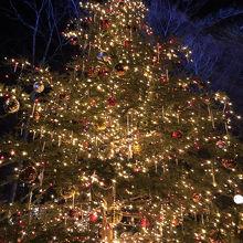 クリスマスタウン 軽井沢