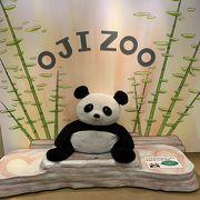 パンダにコアラ