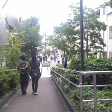 原宿キャットストリート