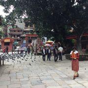 ダルバール広場に寺院が集まっているので観光の中心です