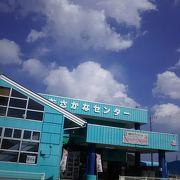 魚介系を多く扱っているお店です