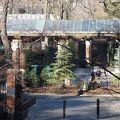 写真:セントラルパーク動物園