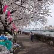 ゴミも、整然と整理されていて、さすが日本という感じ