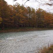 水清く冷たい、綺麗な川