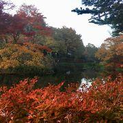 秋の風景。アウトレットだけじゃ勿体ない