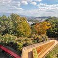 写真:福岡市動植物園展望台