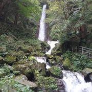 楓と苔の緑が美しい滝