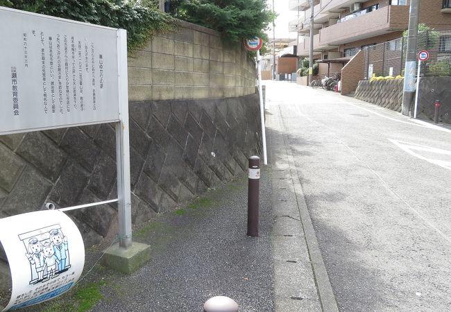渡辺崋山ゆかりの道