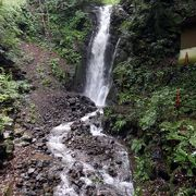 朝の湯河原の散歩道その2 不動滝 だるま滝 ロビーラウンジの喫茶