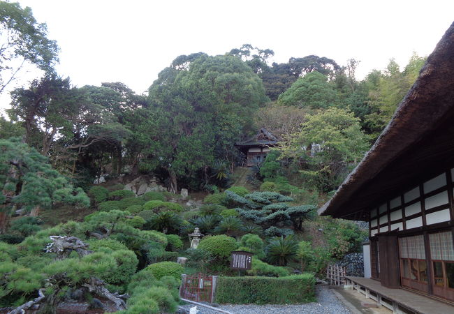 龍華寺庭園観富園