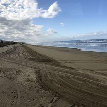 砂浜走れる機会は少ないですね