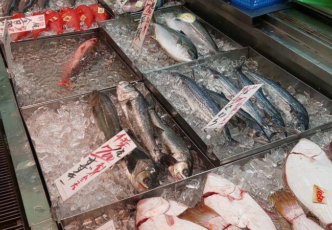 角 上 魚類 所沢