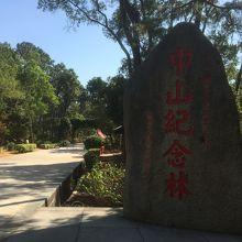 中正公園 中正記念林