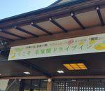 関サービスエリア(上り線)