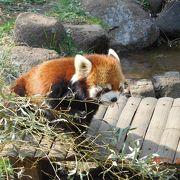 子供と行きたい動植物園!!