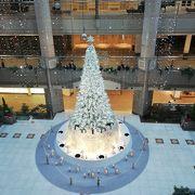 今年のクリスマスツリー ランドマークプラザ