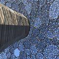 写真:自然体感展望台 六甲枝垂れ