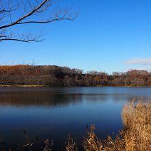 水芭蕉の群生地などがあるようですが11月の上旬の網走湖は見るべきものは何もなし
