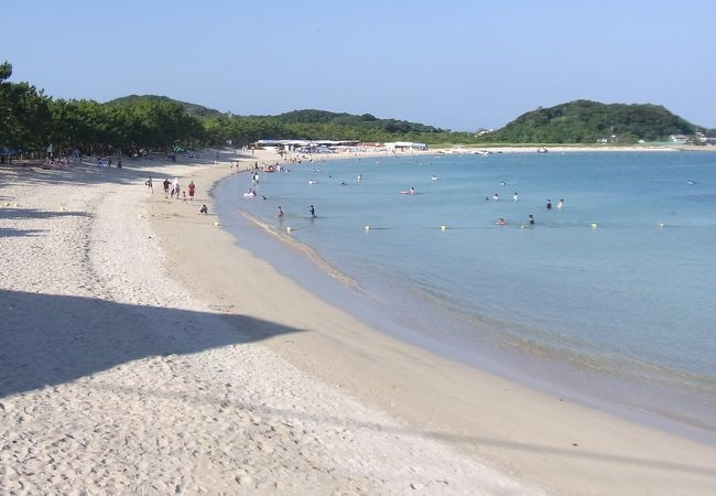 白砂青松の美しい浜