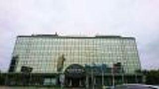 ノボテル モスクワ シェレメティエヴォ エアポート ホテル