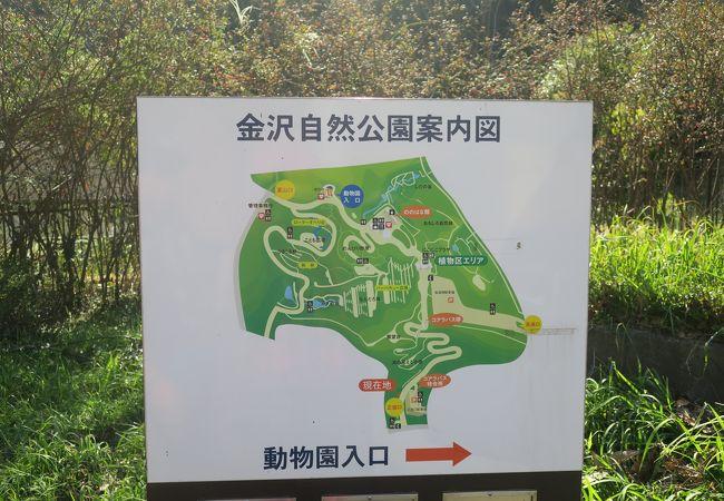 公園 金沢 自然